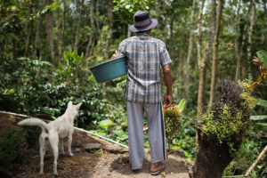 Bali Beans Coffee Farm Experience